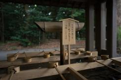 Temizuya, Meiji Jingu, Tokyo