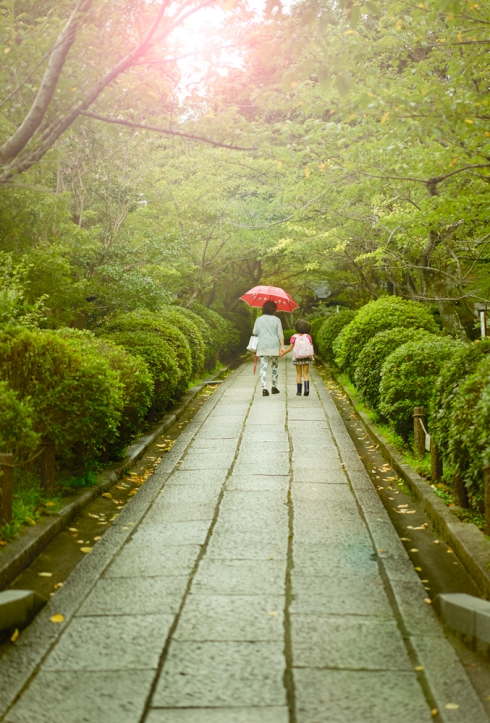 A Walk in The Park, Kyoto, Japan